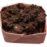 Wet soil expanded to fill container.