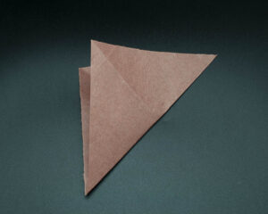 Fold across the diagonal from right to left.