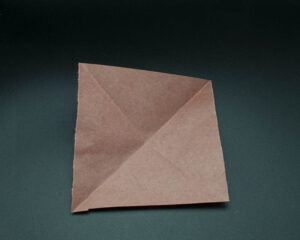 Unfold the paper again.